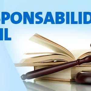 Curso de Práctica en Responsabilidad Civil